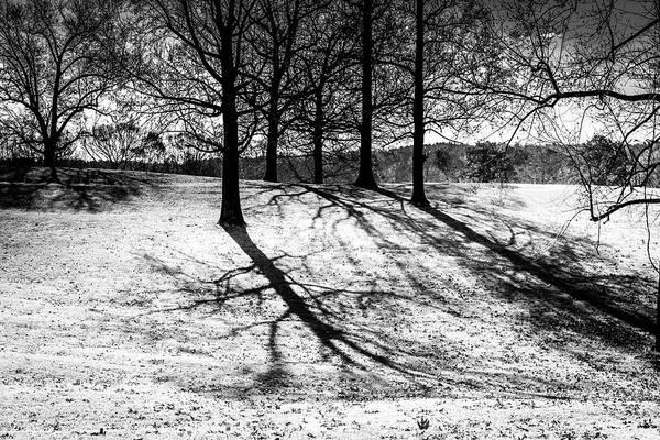Photograph - Cold Morning Shadows by Doug Camara