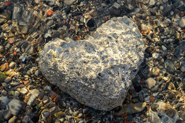 Photograph - Cold Stone Heart - Serendipitous Discovery At The Bottom Of Lake Ontario by Georgia Mizuleva