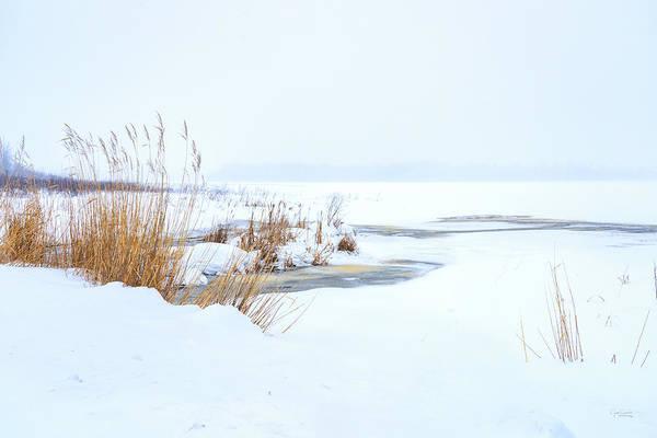 Photograph - Cold Winter Snow Scene by Judi Dressler