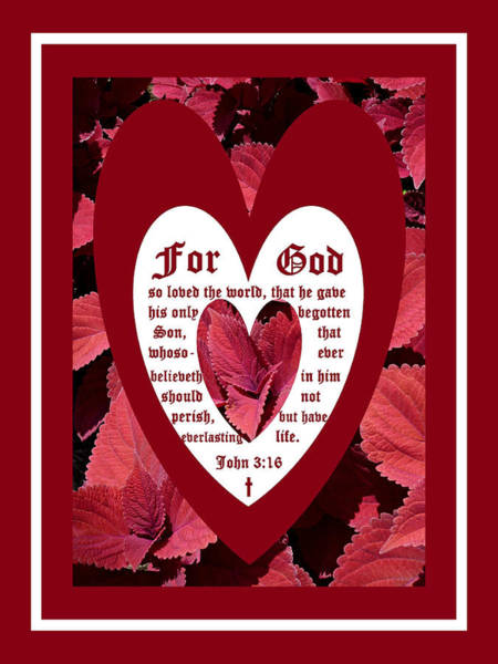 Wall Art - Photograph - Coleus Close-up Heart With John 3 Vs 16 by Michael McBrayer