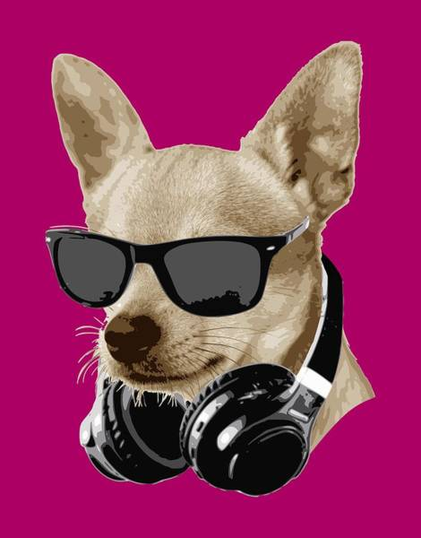 Wall Art - Digital Art - Coll Chihuahua by Filip Hellman