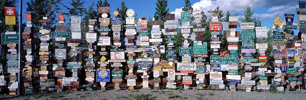 Wall Art - Photograph - Collection Of Signs, Sign Post Forest by Panoramic Images