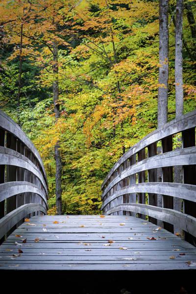 Photograph - Color Bridge by David Heilman