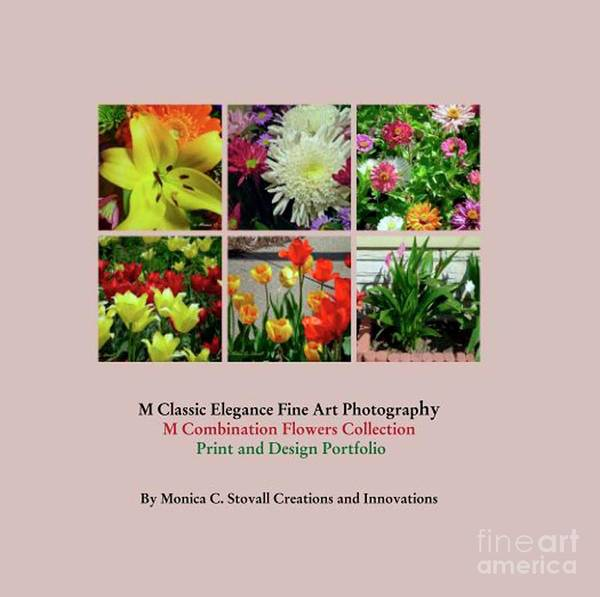 Photograph - Color Combination Flowers Portfolio by Monica C Stovall