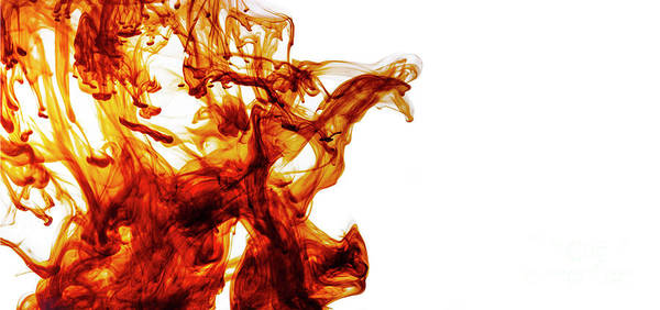Photograph - Color Liquid Motion In Water. Abstract Paint Splash Background.  by Jelena Jovanovic