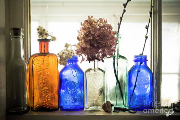 Photograph - Color Window Sill by Alana Ranney