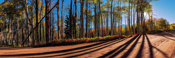 Photograph - Colorado Backcountry Drive Panorama 36 X 12 By Olena Art by OLena
