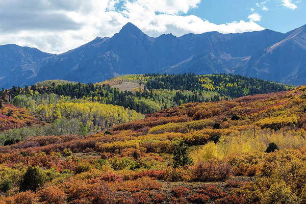 Photograph - Colorado Color Bonanza by James BO Insogna