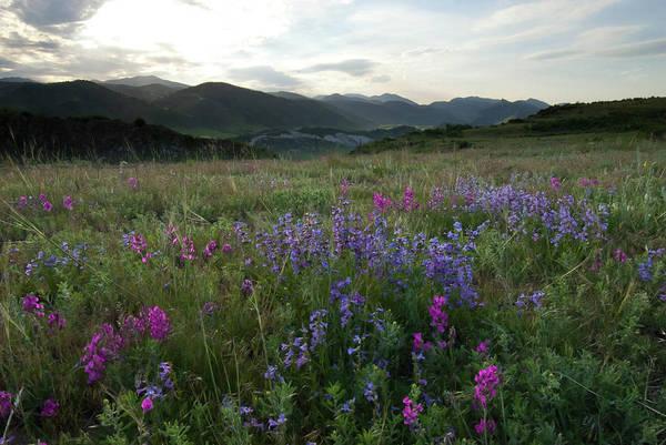 Photograph - Colorado Evening Mesa Landscape by Cascade Colors