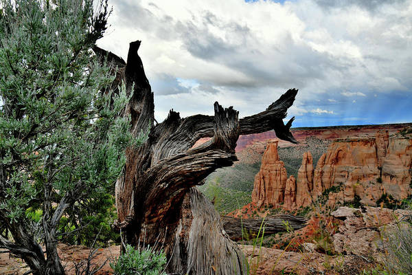 Photograph - Colorado National Monument's Grand View Point by Ray Mathis