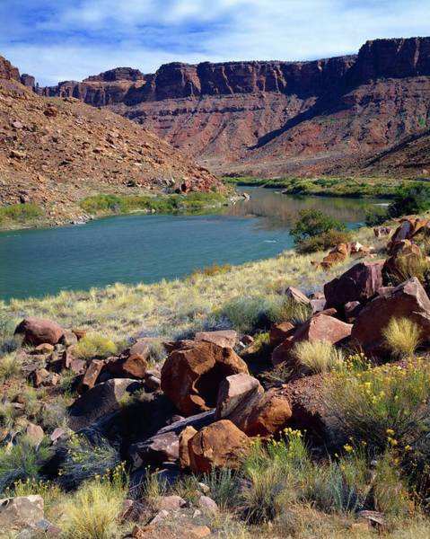 Wall Art - Photograph - Colorado River by Design Pics/david L. Brown
