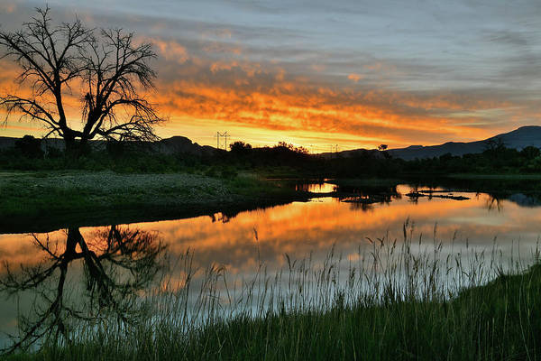 Photograph - Colorado River Sunrise by Ray Mathis