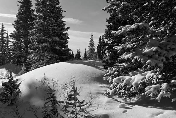 Photograph - Colorado Winter Black And White Landscape by Cascade Colors