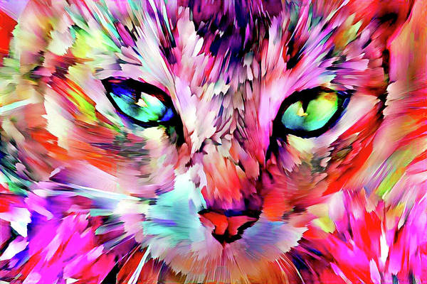 Digital Art - Colorful Abstract Tabby Cat Art - Hot Pink by Peggy Collins
