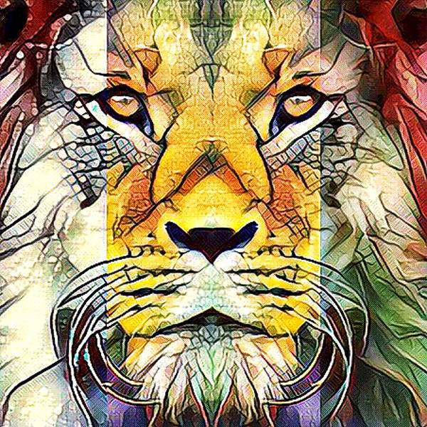 Digital Art - Colorful African Lion Portrait by Shelli Fitzpatrick