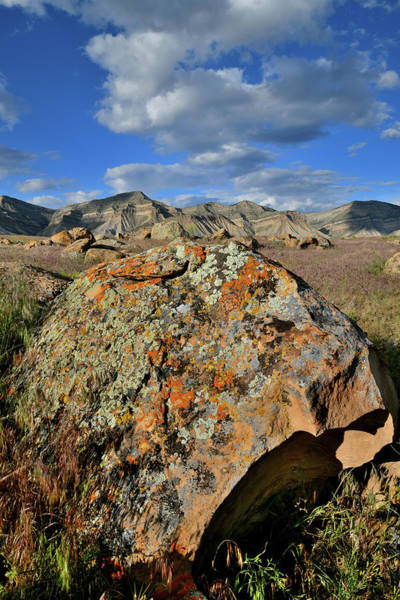 Photograph - Colorful Boulders Of Book Clifrs by Ray Mathis