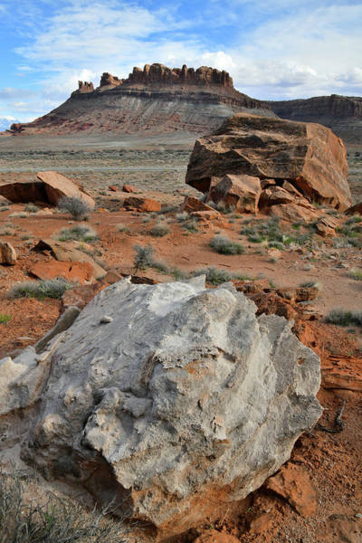 Photograph - Colorful Boulders Of Utah's 313 by Ray Mathis
