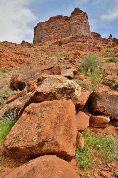 Photograph - Colorful Canyon Walls Along Colorado River In Utah by Ray Mathis