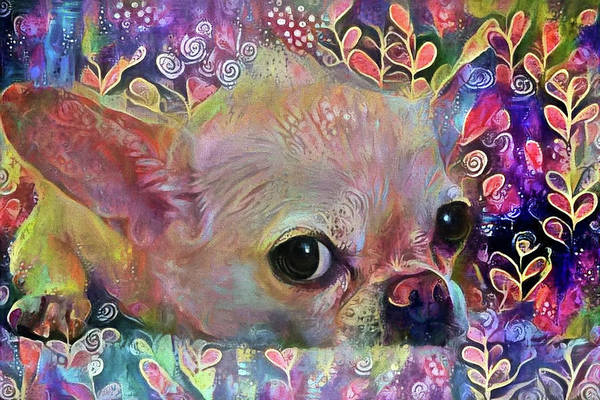 Digital Art - Colorful Chihuahua Dog Art by Peggy Collins