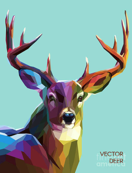 Reindeer Wall Art - Digital Art - Colorful Deer Illustration.  Background by Sovusha
