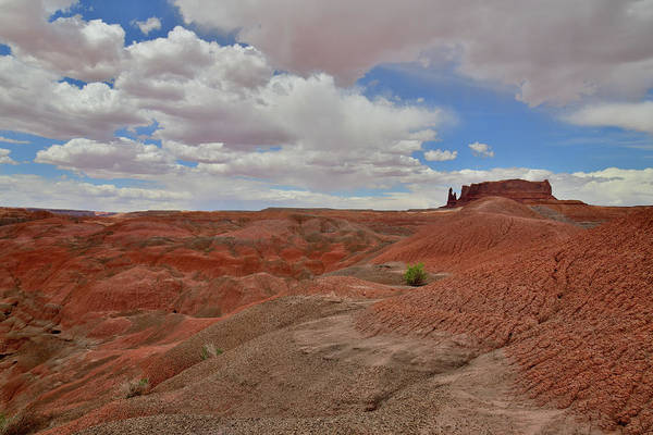 Photograph - Colorful Eroded Arizona Dunes Near Chinle by Ray Mathis