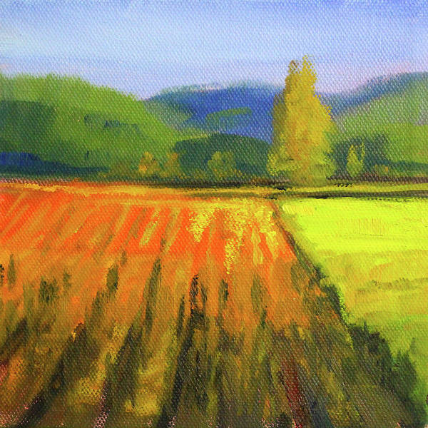 Wall Art - Painting - Colorful Fields Landscape by Nancy Merkle
