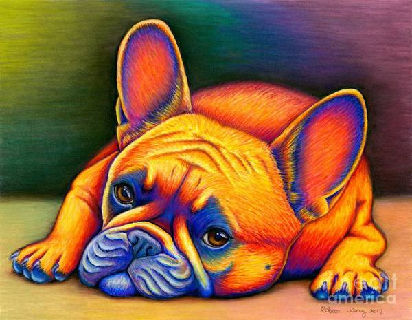 Pet Portrait Drawing - Daydreamer - Colorful French Bulldog by Rebecca Wang