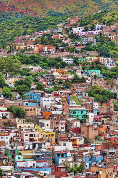 Photograph - Colorful Hilltop Houses In Guanajuato, Mexico by Tatiana Travelways