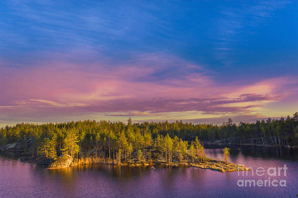 Wall Art - Photograph - Colorful Landscape With Pines Trees by Sergebertasiusphotography