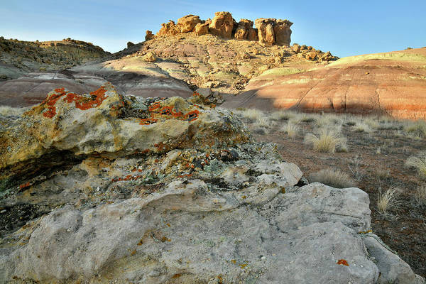 Photograph - Colorful Lichens Boulders And Dunes At Red Point by Ray Mathis