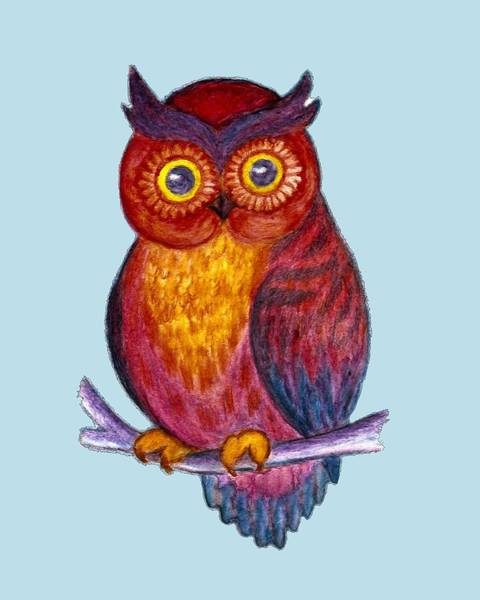 Drawing - Colorful Owl by Irina Dobrotsvet