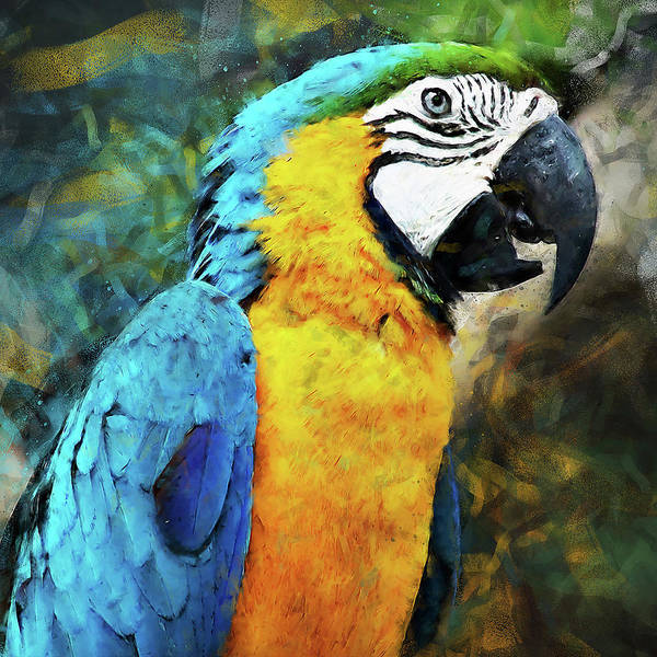 Painting - Colorful Parrot - 05 by Andrea Mazzocchetti