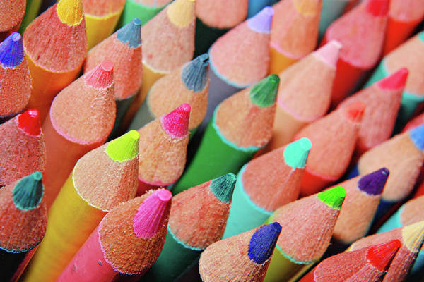 Art In Canada Photograph - Colorful Pencil by Dayna Cote Photography