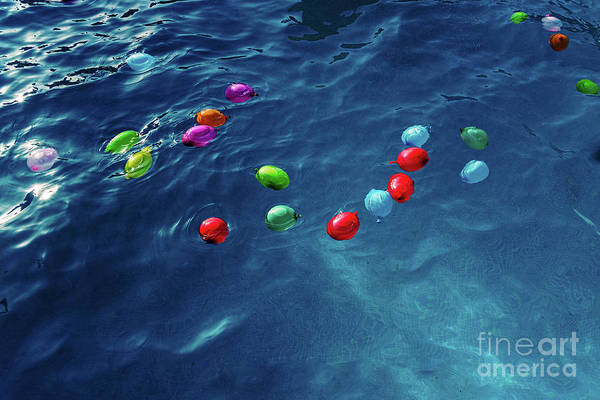 Wall Art - Photograph - Colorful Plastic Water Balloons Floating In A Pool To Play On Va by Joaquin Corbalan
