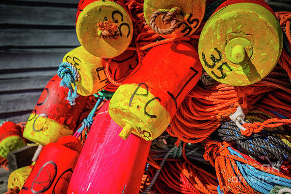Photograph - Colorful Ropes And Buoys by Eva Lechner