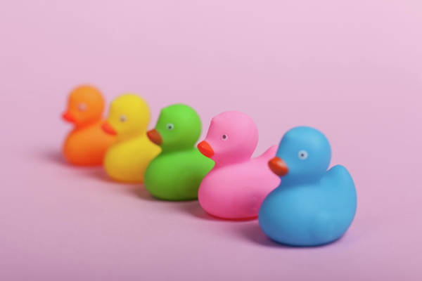 Rubber Ducky Photograph - Colorful Rubber Ducks On Pink Background by Michael Dechev