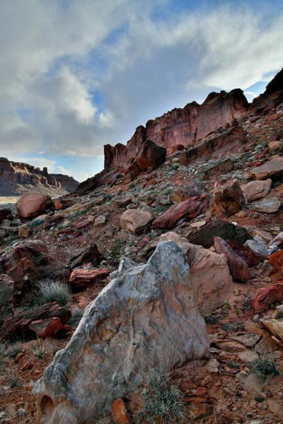Photograph - Colorful Scene Along Utah's 313 Corridor by Ray Mathis
