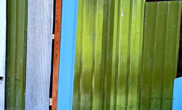 Photograph - Colorful Shed Siding by Kae Cheatham