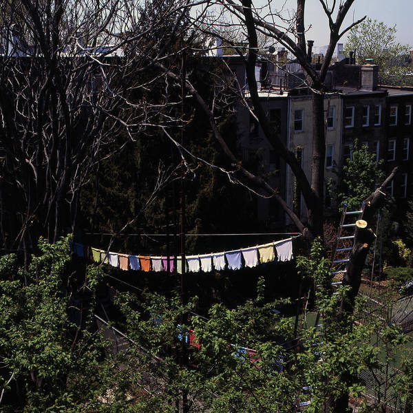 Clothesline Photograph - Colorful Shirts On Laundry Line Behind by Ladd Halsey