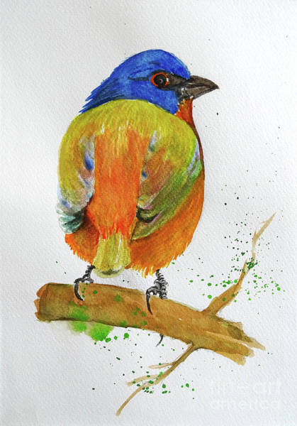 Bunting Painting - Colorful Sparrow by Jasna Dragun