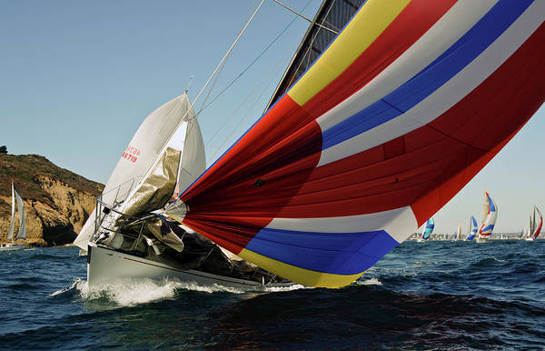 Photograph - Colorful Spinnaker Run by David Shuler