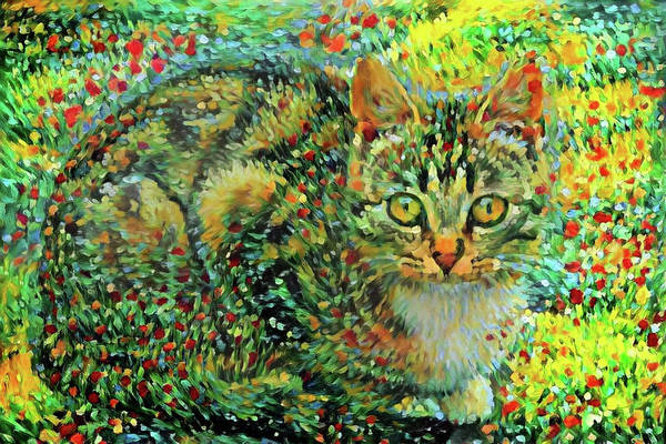 Digital Art - Colorful Tabby Cat Art by Peggy Collins
