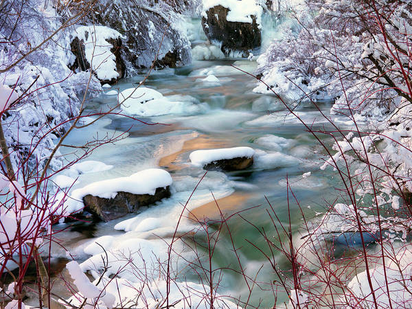 Photograph - Colorful Winter by Leland D Howard