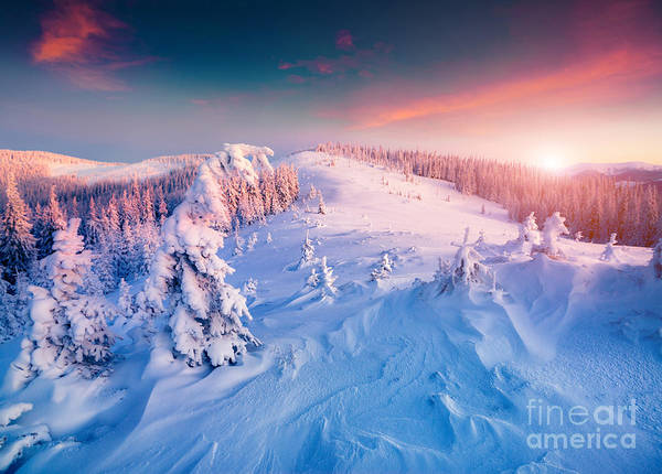 Wall Art - Photograph - Colorful Winter Sunrise In The by Andrew Mayovskyy