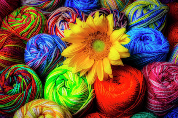Wall Art - Photograph - Colorful Yarn And Sunflower by Garry Gay
