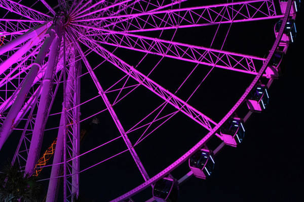 Photograph - Colors Of The Wheel by Ree Reid