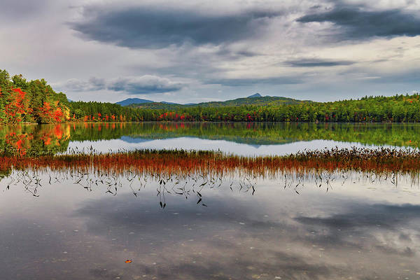 Photograph - Colors, White Lake N H by Michael Hubley