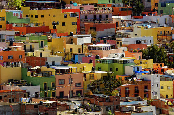 Zacatecas Photograph - Colourful House Facades by Blind Dog Photo Dan Gair