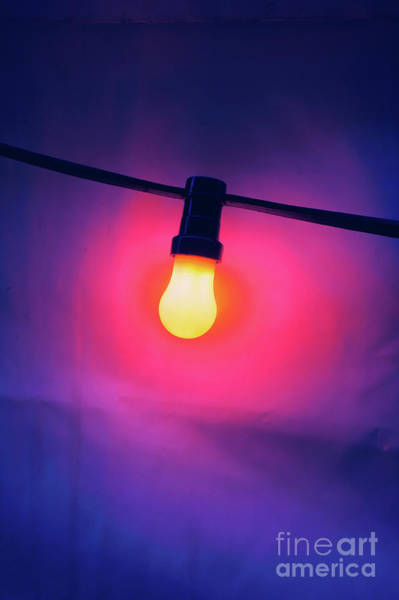 Wall Art - Photograph - Colourful Light Bulb by Tom Gowanlock