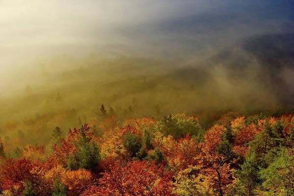 Wall Art - Photograph - Colours Of Autumn by Ren Kuljovska